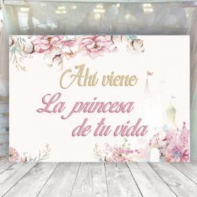 Cartel Novia Princesa